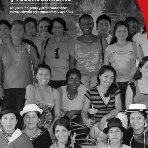 32_Publicacion mujeres indigenas-afro AF-page-001