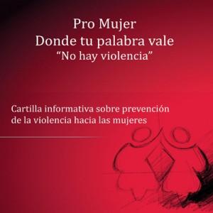 4_cartilla_informativa_pro_mujer-page-001
