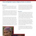 37_giz2013-0720es-violencia-mujeres-paraguay-page-001
